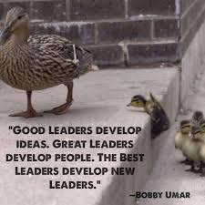 Leaders Should Be Respectful to Others