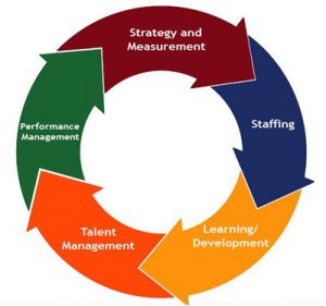 Stages to Performance Management